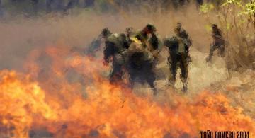 Incendio de La Primavera en 2004. © Fotos de Antonio Romero González
