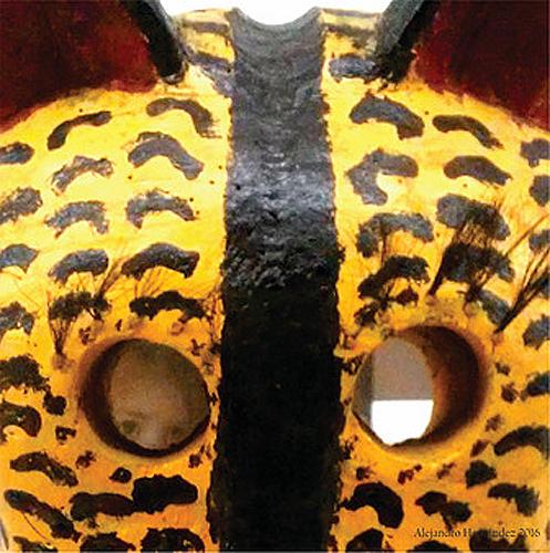 "Título: ""Miradas de jaguar"" Autor: Alejandro Hernández Técnica: Fotografía Digital País: México"