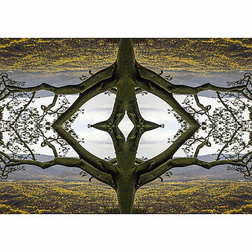 """Título: """"Ritual ancestral natural"""" Autor: Edwin Mauricio Cruz Reyes Técnica: Fotografía digital País: Ecuador"""