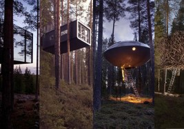 TreeHotel ¿Te alojarías en casas árbol como estas?