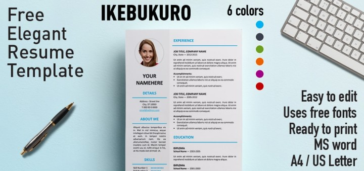 Ikebukuro Elegant Resume Template - Resume In Word