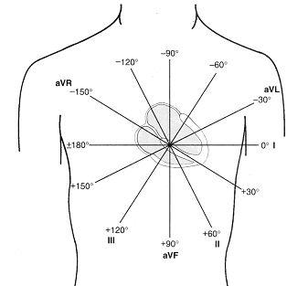 12 lead ekg limb diagram