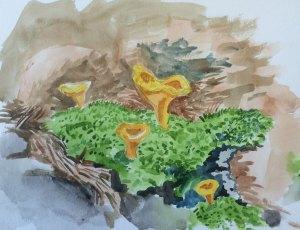 More Painting Chantelle Mushrooms