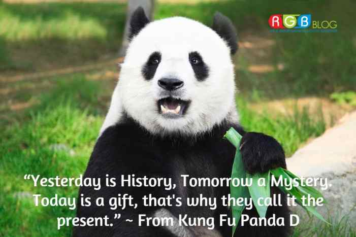"""""""Yesterday is History, Tomorrow a Mystery. Today is a gift, that's why they call it the present."""" ~ From Kung Fu Panda D"""