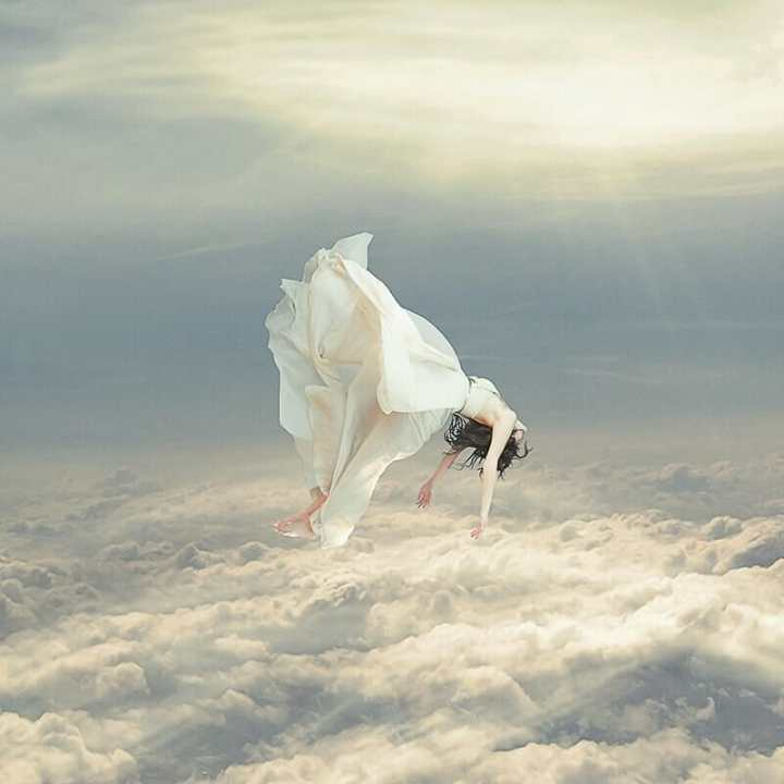 Free Falling Dream