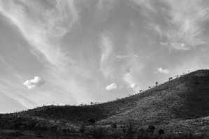 Pilanesberg DSC_0992-web