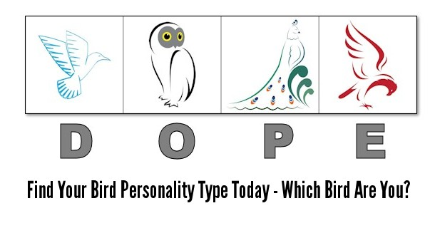 DOPE Bird 4 Personality Types Test (Printable  Online Version)