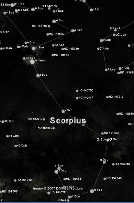 Gambar Bintang Scorpio Zodiak | Richocean Indonesia Blog