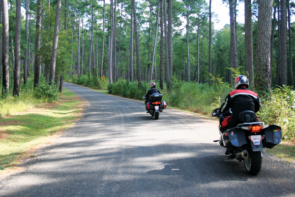 Texas Motorcycle Rides The Texas Forest Trail Rider