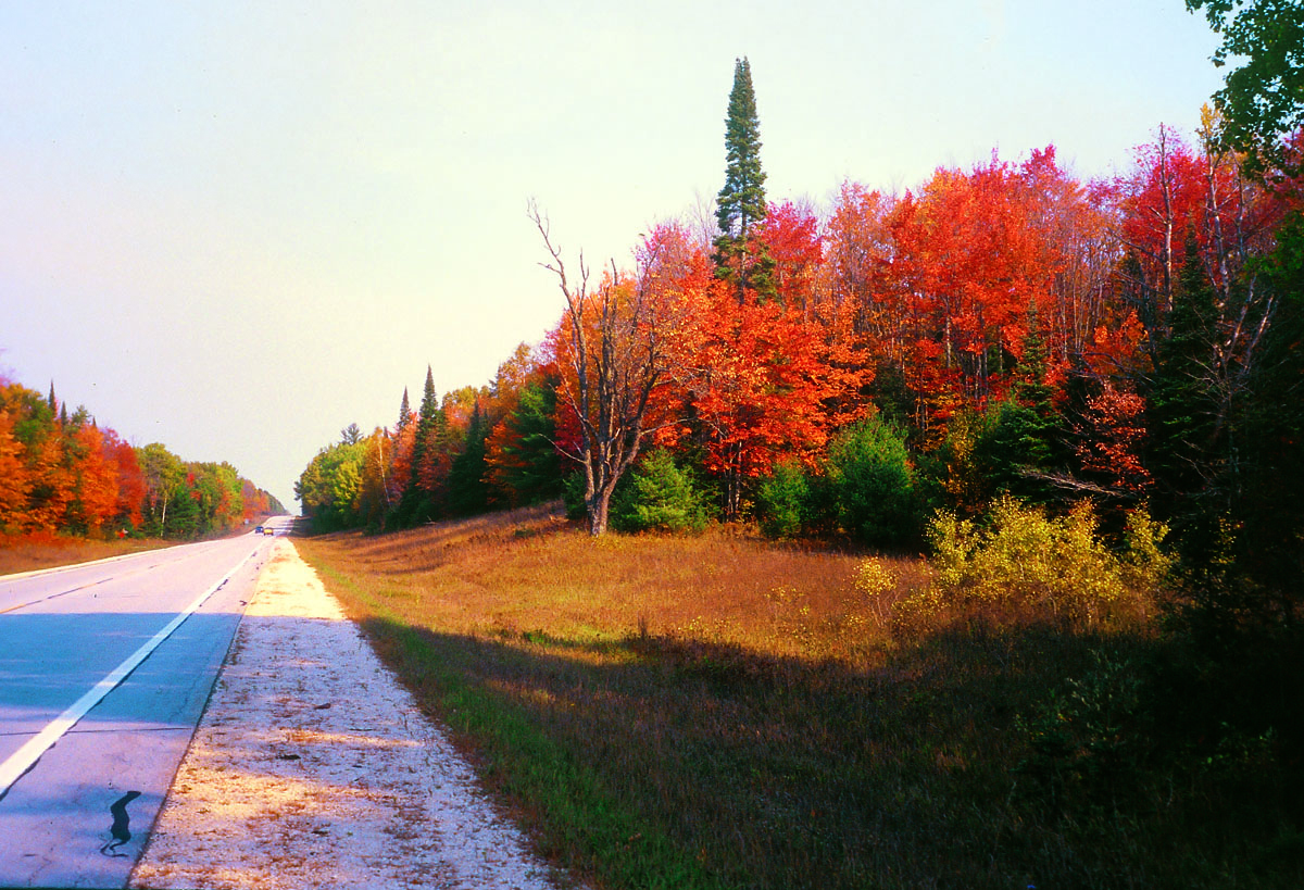 Michigan Motorcycle Touring Tunnel Of Trees Road