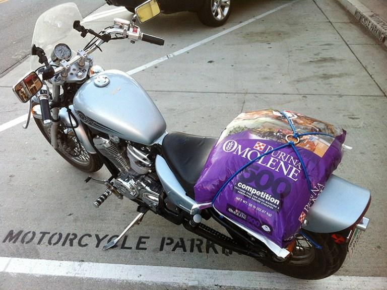 50-lb bag of dog food