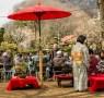 Mount Takao Plum Blossom Festival 2015