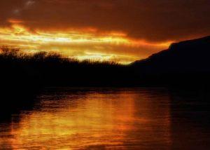 Gold-River.jpg