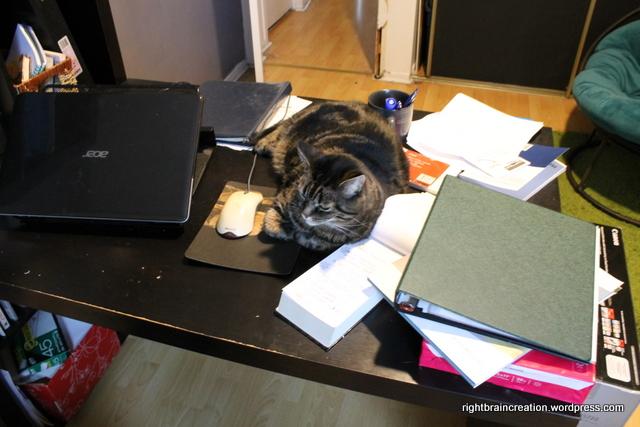 Desktop Cat