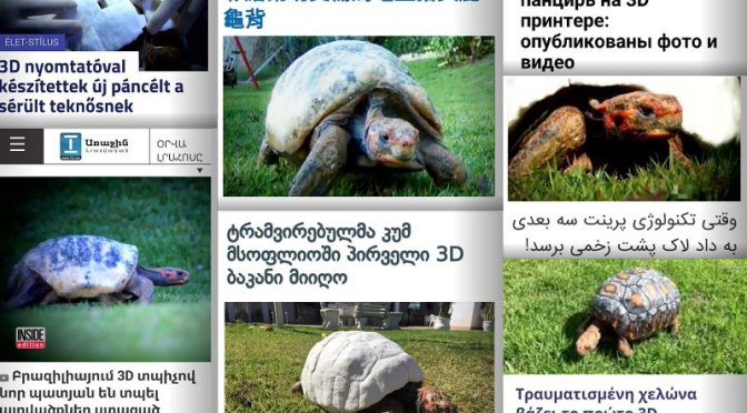 Impresión 3D y software libre Blender devuelven caparazón a tortuga