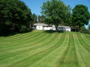 lawn-mowing-west-lakeland-mn-300x225.jpg