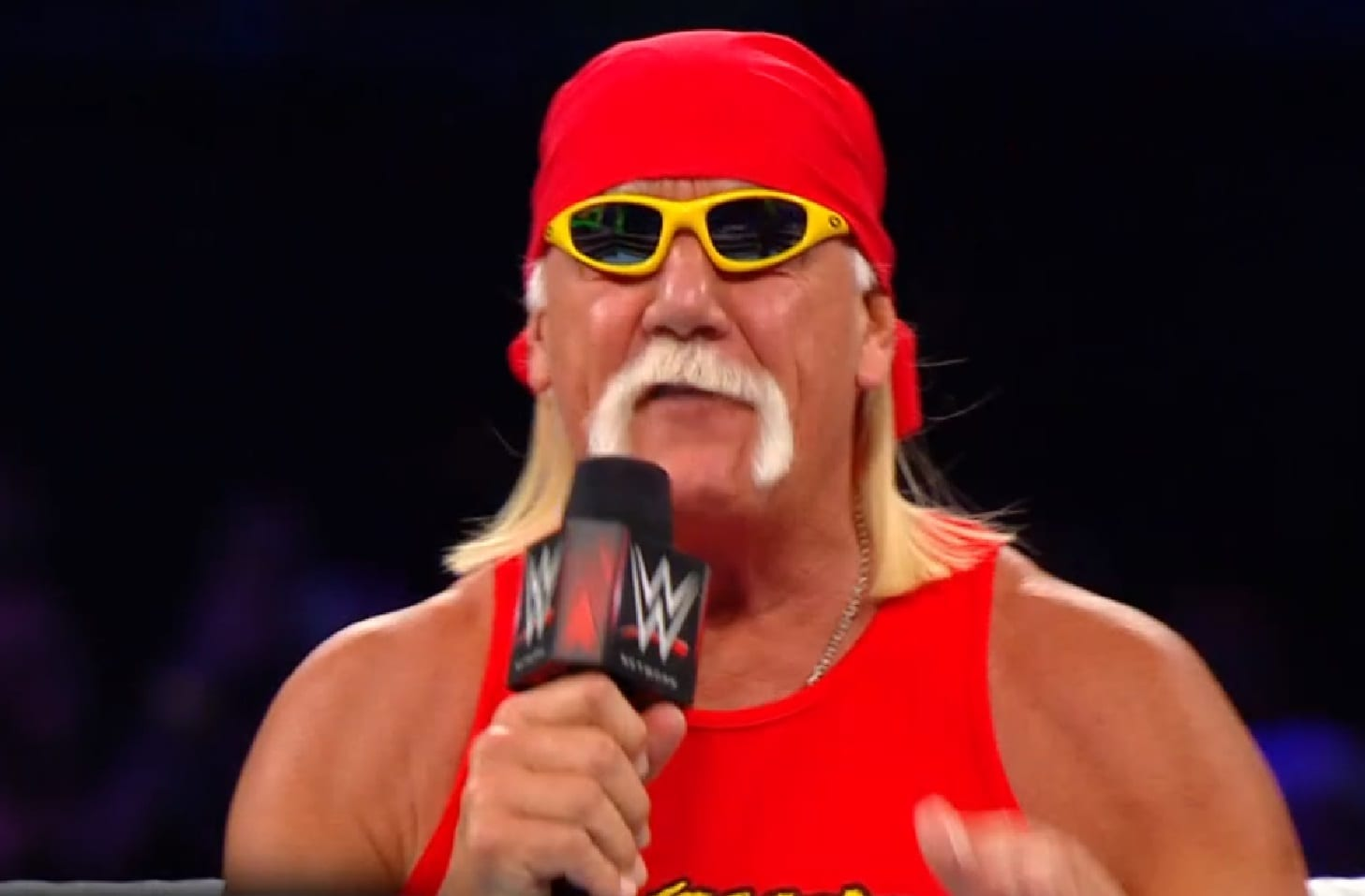 Hogan Hulk Odds Of Hulk Hogan 39s Wwe Royal Rumble Appearance Just Got