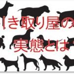 犬やペットの引き取り屋の実態とは!対策や改善方法はないのか?
