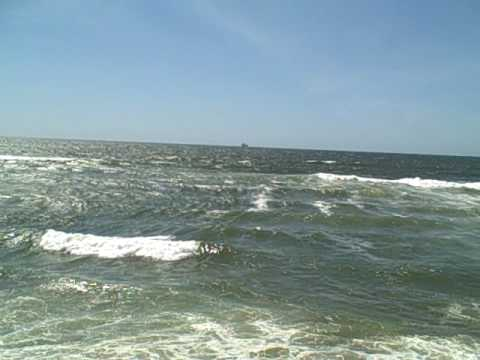 Rip Current Stories Stories from rip current survivors, victims