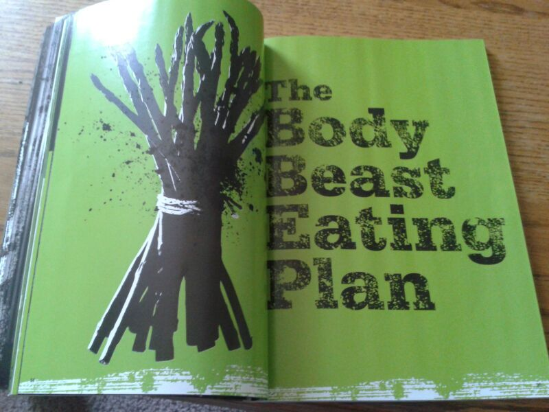 BODY BEAST Review - A Full, No BS Look At Beachbodyu0027s Mass Gaining - beast workout sheet