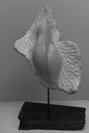 Colombe en albatre - MESSAGÈRE - Dominique Rivaux
