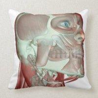 Musculoskeleton of the Head and Neck 3 Throw Pillows