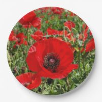 Red Poppy Paper Plates & Red Poppy Disposable Plate ...