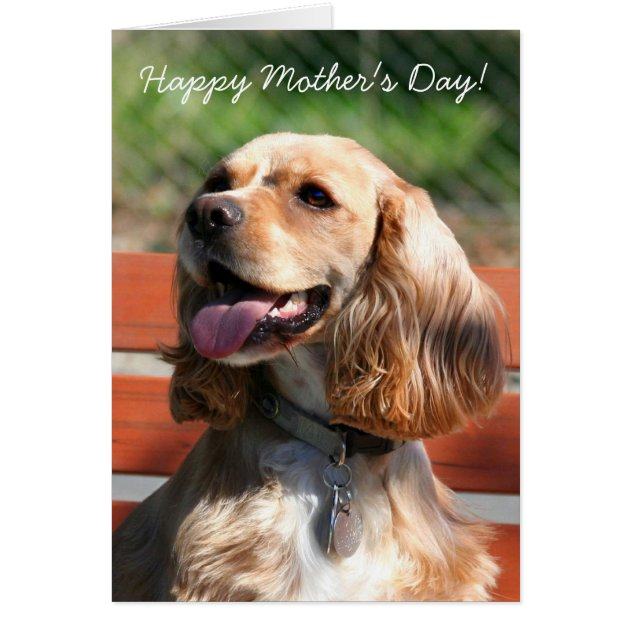 mothers day card greeting