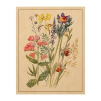Wildflowers Antique Watercolor Wood Wall Art | Zazzle.com.au