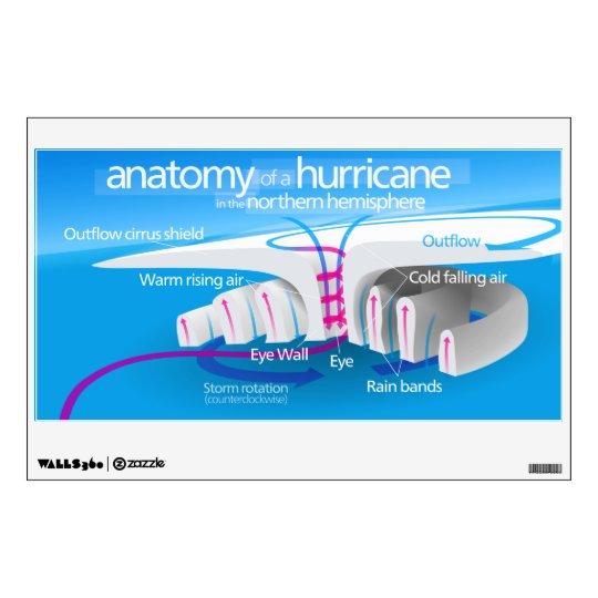 Anatomy of a Hurricane Diagram Wall Sticker Zazzle