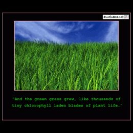 And The Green Grass Grew…