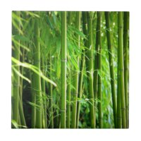 Bamboo Ceramic Tiles | Zazzle