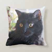 Black Cat, throw pillow | Zazzle