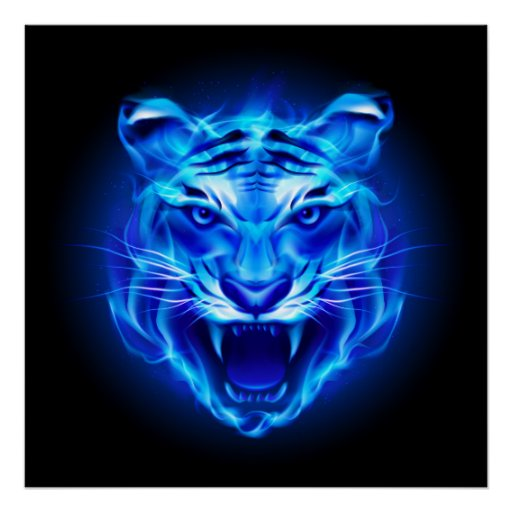 Tiger Live Wallpaper Iphone X Blue Fire Tiger Face Poster Zazzle