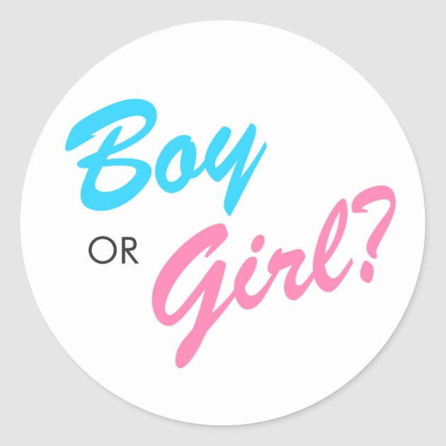 Sweet Girl And Boy Hd Wallpaper Blue Amp Pink Boy Or Girl Gender Reveal Stickers Zazzle Com