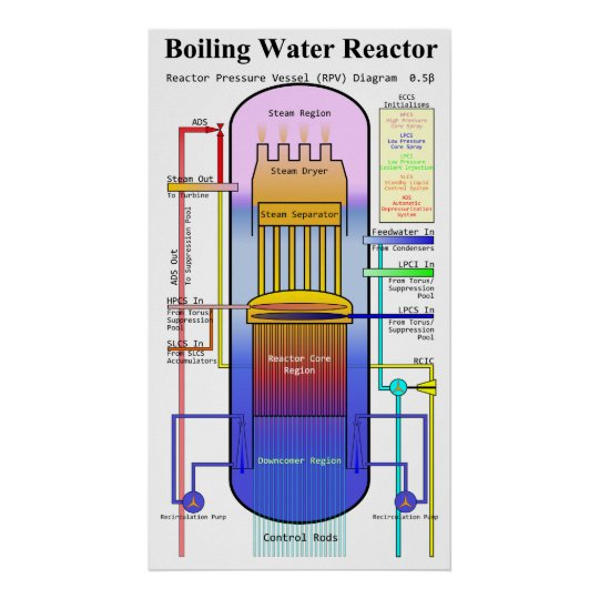 Boiling Water Reactor Pressure Vessel Diagram Poster Zazzle