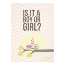 Cute Owl Family Baby Gender Reveal Party Invite