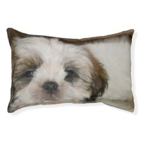 Cute Shih Tzu Dog Small Dog Bed | Zazzle