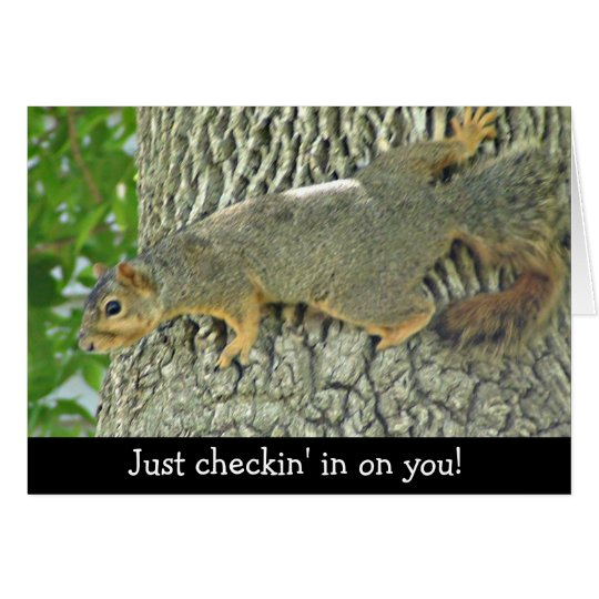 Cute Squirrel Checking in on You Card
