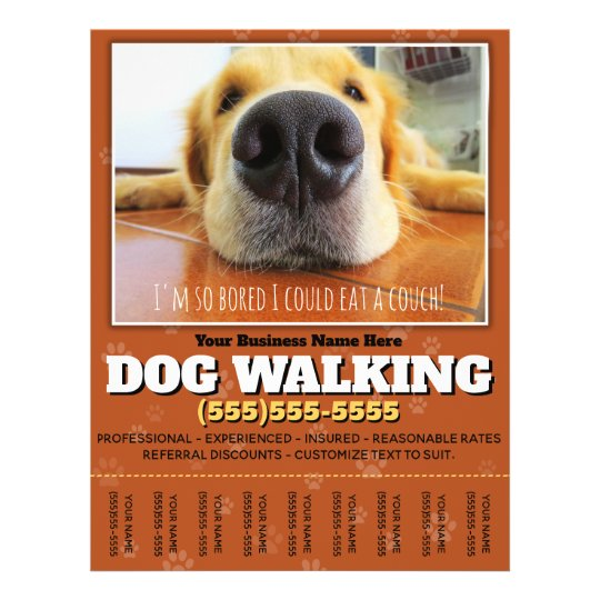 Dog Walking Custom Flyer Zazzle