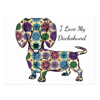 I Love My Dachshund Postcard