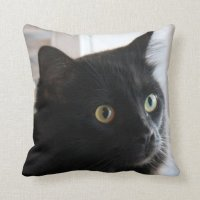 Large-eyed Black Cat Pillow, home or dorm | Zazzle