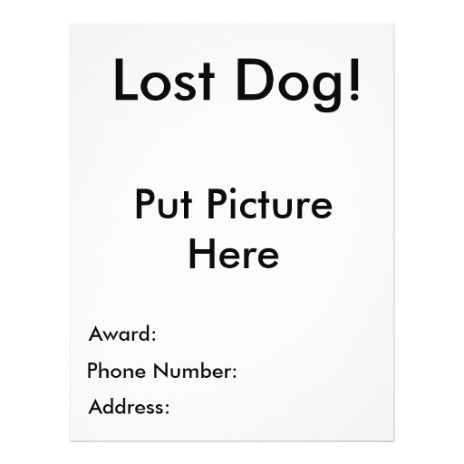 missing person template – Missing Dog Flyer Template