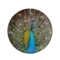 Peacock Bird with Royal Plumange on Display Dinner Plate ...
