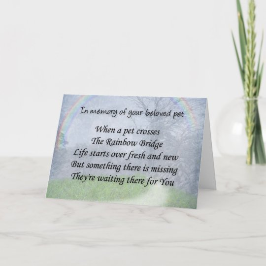 Pet loss sympathy card - pet waits for you Zazzle