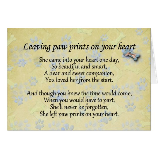 Pet sympathy card for pet loss - Leaving paw print Zazzle