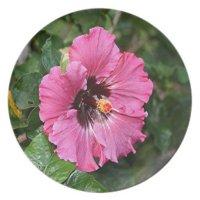 Pink purple hibiscus flower dinner plate | Zazzle
