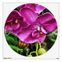 Pink Thai Orchid Wall Sticker | Zazzle