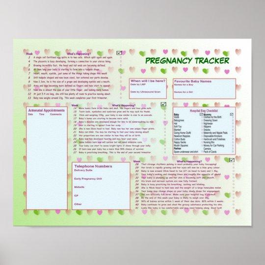 Pregnancy Tracker Poster Zazzle