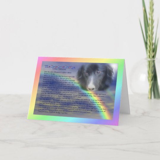 Rainbow Bridge Poem Pet Loss Sympathy Card Zazzle